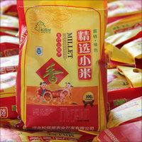 松塔坡-小米